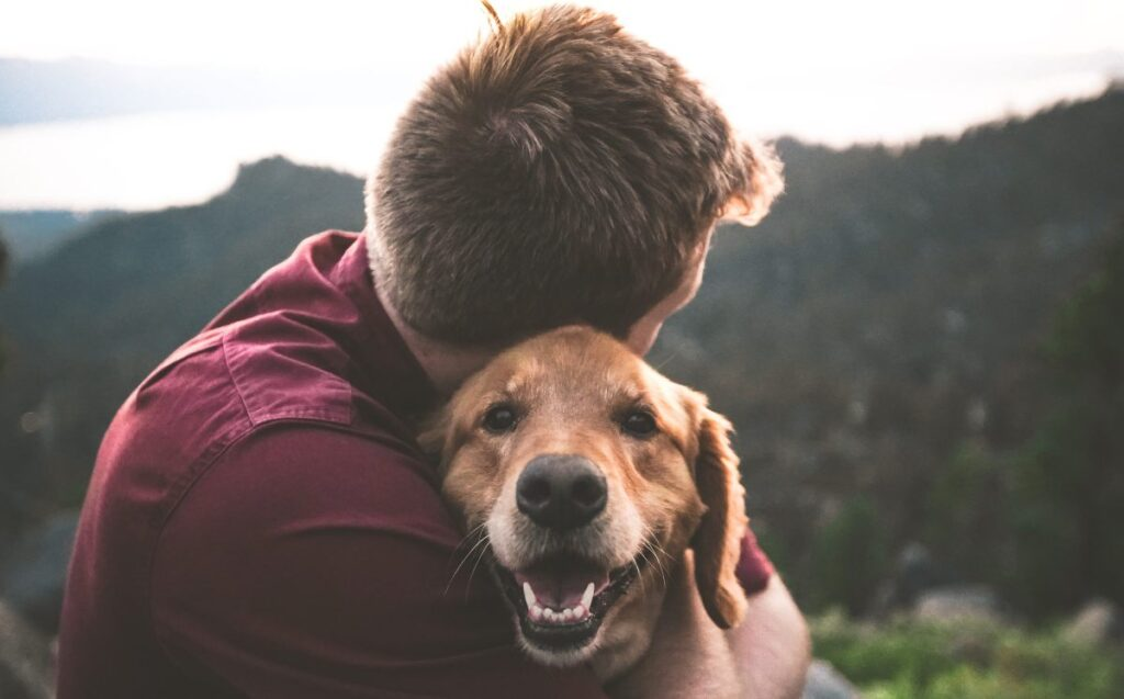 Man with a dog - cheating quotes